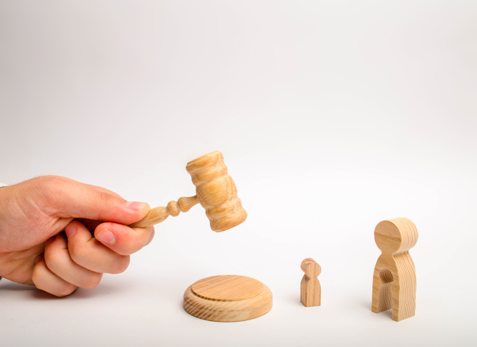 What Does an Adoption Lawyer Do?